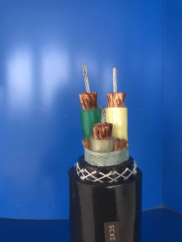 变频高温抗拉屏蔽软电缆 ZR-BPJGCPRP3*35+3*2.5+3*φ3