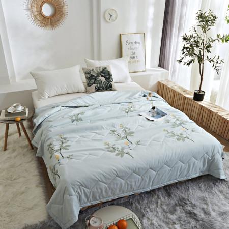 床上用品 约克罗兰 艾草驱蚊被 聚酯纤维含艾草精华素 夏被