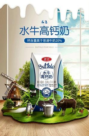 广西左江高钙水牛奶200ml*10盒