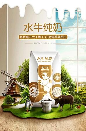 左江水牛纯奶200ml*10盒