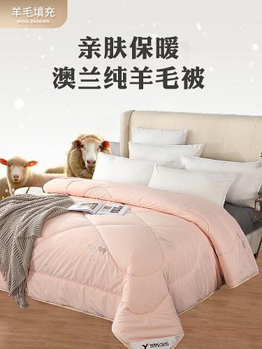 悠梦嘉居 澳兰纯羊毛被保暖被冬被无异味100%优质水洗羊毛200*230cm礼品